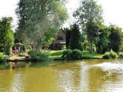 The Willows Bed & Breakfast, York, North Yorkshire
