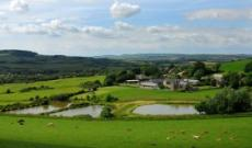 Nettlecombe Farm Holiday Cottages & Fishing Lakes