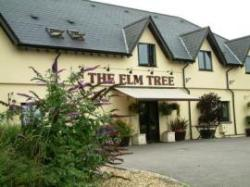 The Inn at the Elm Tree, Newport, South Wales