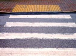 Zebra Crossing Introduced