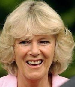 Marriage of Prince Charles and Camilla announced