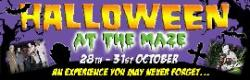 Halloween at the National Forest Maize Maze!